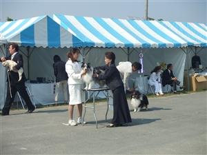 大阪クラブ展 019_R.jpg