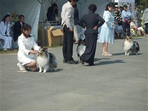 大阪クラブ展 027_R.jpg