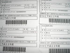 CIMG9146_R.jpg